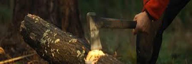 Bijlen & machetes